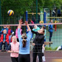 волейбол сестрорецк