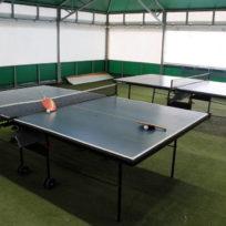 Пинг-Понг, Настольный теннис